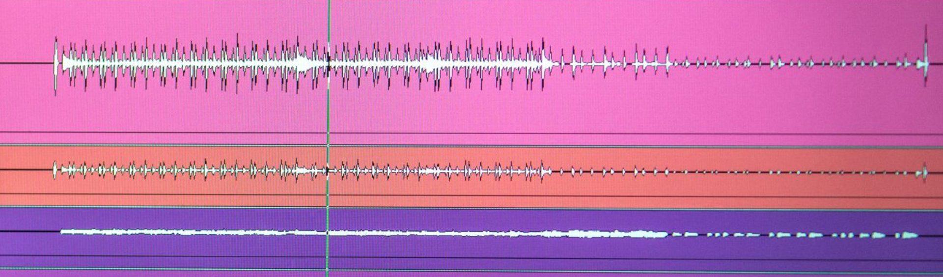Akreditovaný zvukař